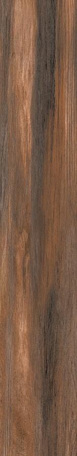 BPine-Cedar