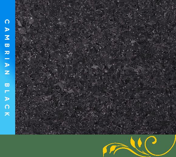 Cambrian-Black