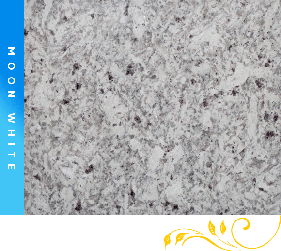 Moon White Granite Counter Top Cabinet Outlet
